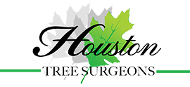 Houston Tree Surgeons logo