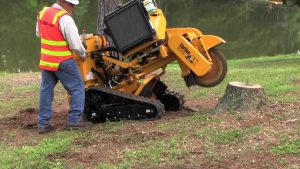 Houston stump grinding